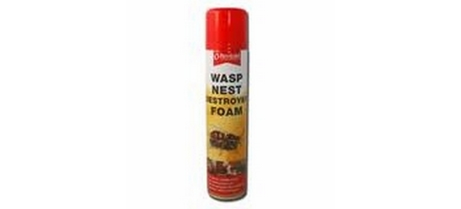 Wasp Nest Destroyer Foam 300ml