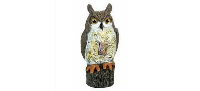 Ornamental Bird Scarer Owl