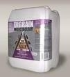 Silverfish Killing Insecticide - 5 Litres